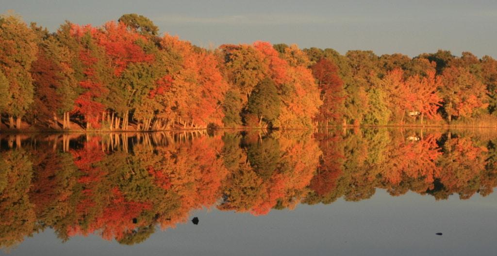 fall 2012 2
