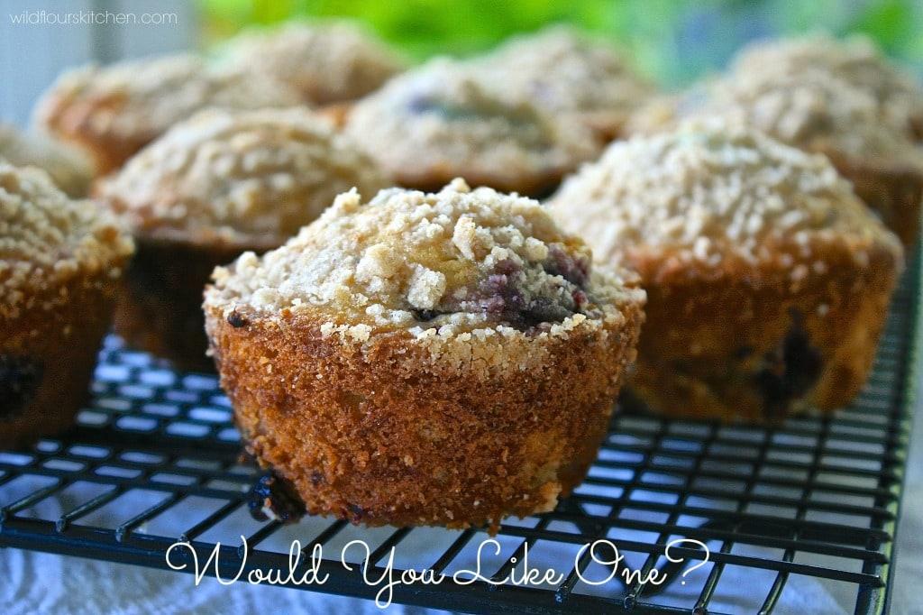 huck muffin close up