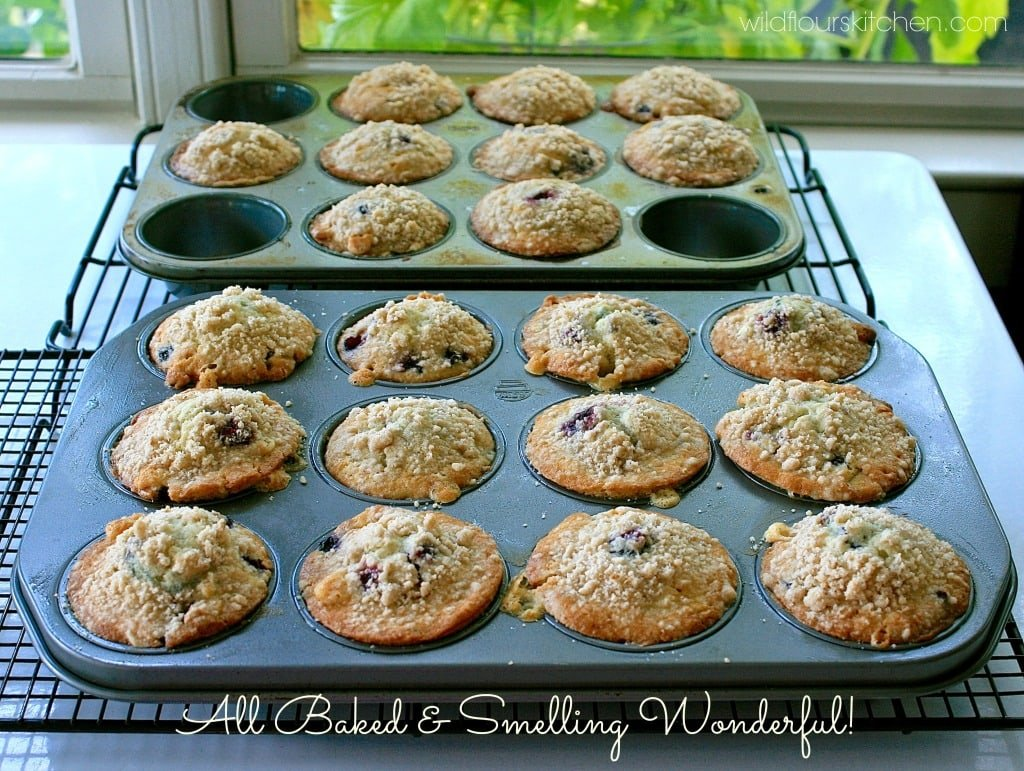 huckleberry muffins baked