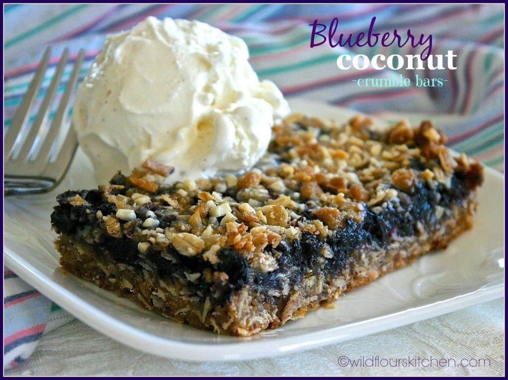blueberry coconut crumble bars