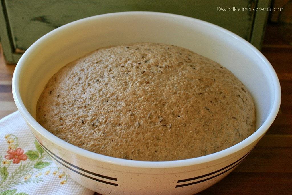 rye roll dough risen