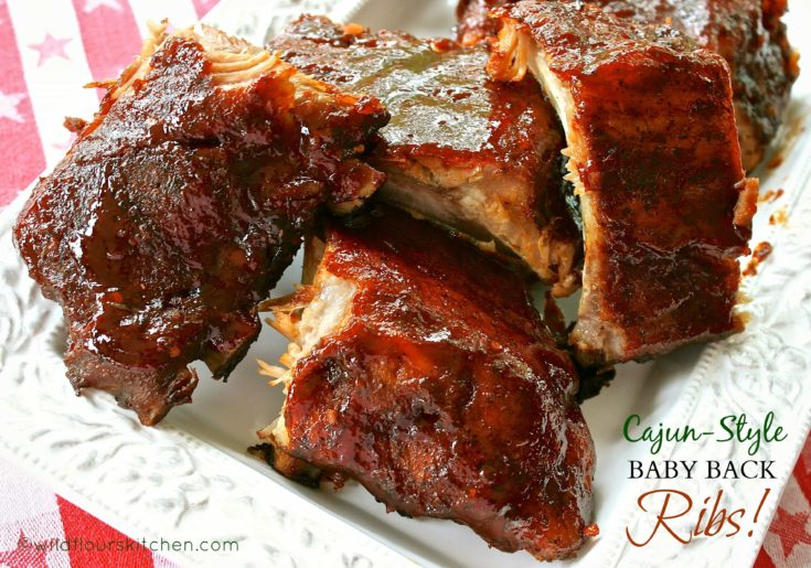 Louisiana Cajun-Style Barbecued Baby Back Ribs (Dry Rub & Easy Mop Sauce)