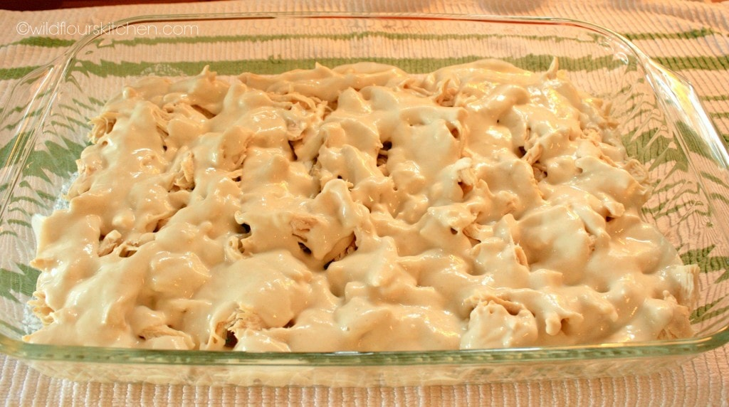 chicken & dumplings sauce 1