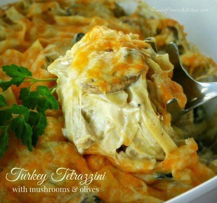 Creamy Cheesy Turkey Tetrazzini